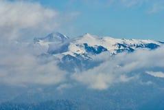 山全景 在前景在中间积雪的冬天森林Lago-Naki里覆盖,主要白种人 免版税库存图片