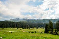 山公园/Igman和别拉什尼察山 库存照片
