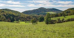 山农场的一个风景看法 库存图片