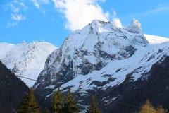 山冬天风景在Dombai 免版税库存照片