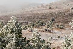 山冬天风景 太阳是光亮的 积雪的谷 风景通过树 免版税库存图片