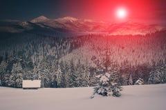 山冬天风景  积雪的针叶树树看法在日出的 减速火箭的过滤器 免版税库存图片