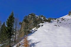 山冬天 库存图片