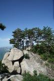 山华山风景蘑菇石头 免版税库存图片