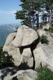 山华山风景蘑菇石头 图库摄影