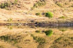 山反射,被隔绝的湖 库存照片