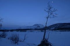 山和冻结的河风景由月亮点燃了 免版税库存图片