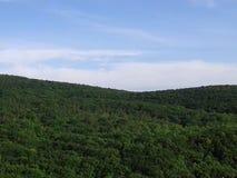 山和小山 混杂的森林和橡木森林 美好的本质 新的成人 蓝天 库存照片