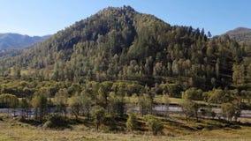 山和山河,小河的全景在晴天的夏天 股票录像