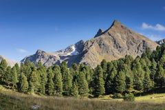 山和峰顶风景 KÃ ¼ htai冰川,自然环境 远足在Stubai阿尔卑斯 Sellrain谷,提洛尔,奥地利 免版税图库摄影
