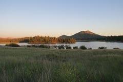 山和杉木在Cuyamaca湖上的树丛半岛 库存图片