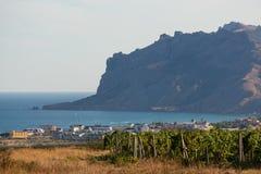 山和村庄背景的葡萄园  图库摄影