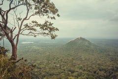 山和林木,从古老锡吉里耶岩石的看法,斯里兰卡绿色上面  免版税库存照片