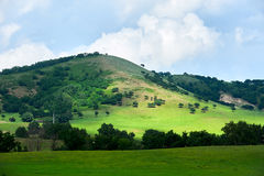 山和森林 库存照片