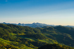 山和森林 免版税库存照片