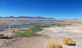 山和湖全景玻利维亚盐水湖 库存图片