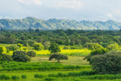 山和自然在Bagan呈绿色季节的,曼德勒,缅甸 库存图片