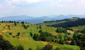 山和草甸是美丽的 免版税库存照片