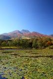 山和荷花池 库存照片