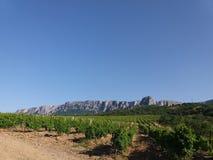 山和葡萄园Simeiz 库存图片