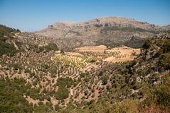 山和谷在马略卡 库存照片
