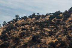 山和阴影 库存图片