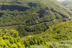 山和雨林小山美丽如画的空中全景在马德拉岛海岛上, 库存照片