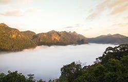 山和雾在土井Angkhang, Chiangmai Thail的早晨 免版税库存照片