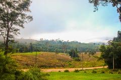 山和雾在早晨 免版税库存照片