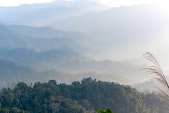 山和雾在热带02 库存照片