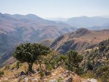山和Malolotja自然保护,斯威士兰,南部非洲干燥风景风景看法  库存照片