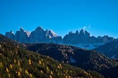 山在与绿色森林的冬天我和在的第一雪 库存照片