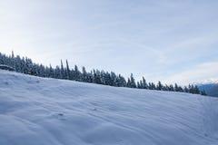 山在冬天 免版税库存照片
