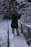 山在冬天 carpathians 库存照片