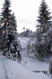 山在冬天 carpathians 图库摄影