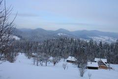山在冬天 carpathians 免版税库存照片