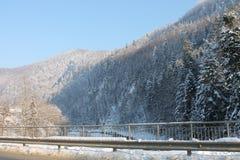 山在冬天 carpathians 免版税库存图片