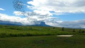 山在冰川国家公园 库存照片