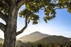 山在北加利福尼亚 免版税库存照片