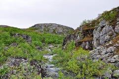 山在北欧 免版税库存照片