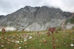 山在吉尔吉斯斯坦 免版税库存图片