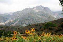 山在吉尔吉斯斯坦 库存图片