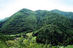 山在夏天 库存图片