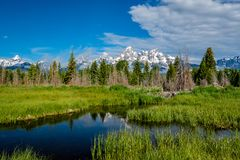 山在有反射的大蒂顿国家公园在斯内克河 免版税图库摄影