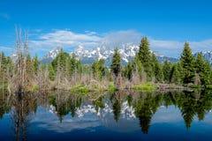山在有反射的大蒂顿国家公园在斯内克河 图库摄影