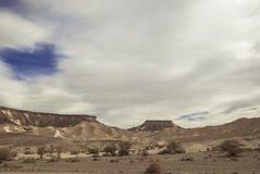 山在沙漠 图库摄影