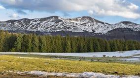 山在法国中央高原,法国 图库摄影