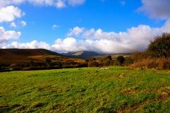 山在爱尔兰 免版税库存照片
