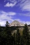 山在科罗拉多 免版税库存图片