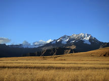 山在秘鲁 免版税库存照片